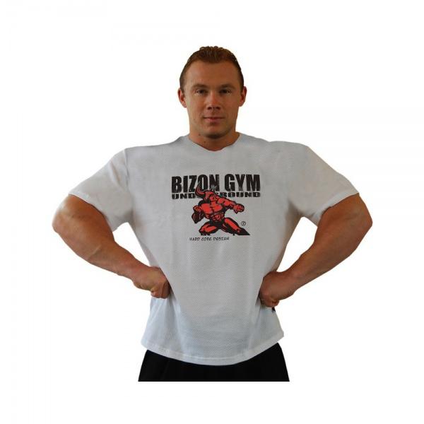 Bizon Gym